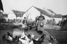 Hs.Nr.7, Maria Schuller beim Füttern der Hühner, um 1940